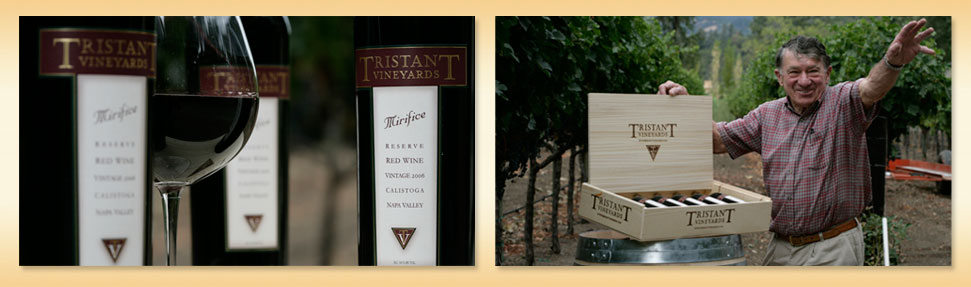 Tristant vineyards image
